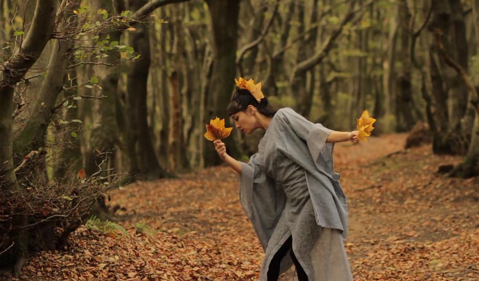 The Dream of A Falling Leaf