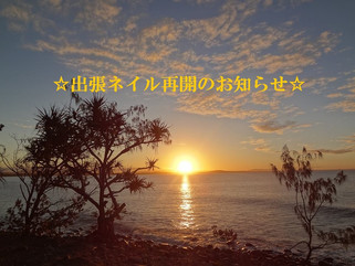 ☆出張ネイル再開のお知らせ☆