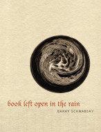 Book Left Open in the Rain by Barry Schwabsky