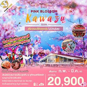 67.EASY PINK BLOSSOM KAWAZU.jpg
