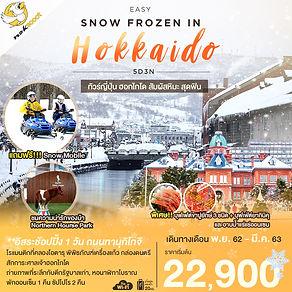 65.EASY SNOW FROZEN IN HOKKAIDO 5D3N.jpg