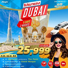 5.(UAE-PRO5D-EY).png