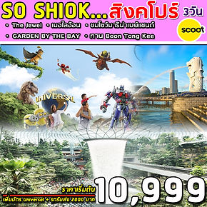 8.SUPERB SO SHIOK 3D.jpg