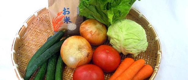 米1kgと季節の野菜セット