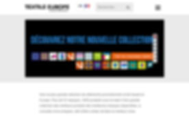 page-accueil-site-textile-europe.png
