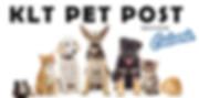 pet_post.jpg