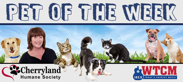 Pet of the Week WTCM