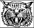 AlpenaWildcats.jpg