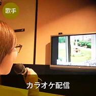 歌手:カラオケ配信.png