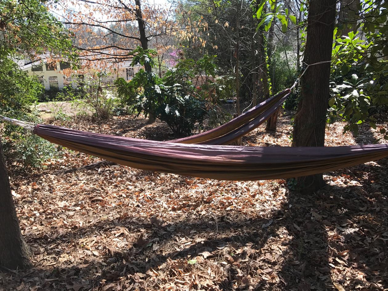Double hammock in back 40 wooded area