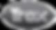Trex logo_edited.png