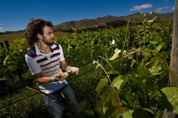 Visit a private, biodynamic vineyard estate