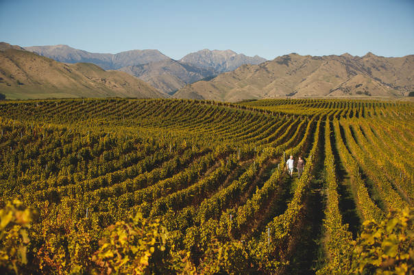 Marlborough's stunning vistas