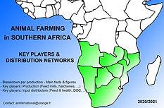 Carte Afrique Australe distribution netw