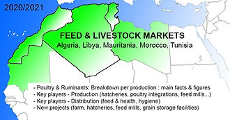 carte Maghreb Feed Livestock 5 pays.jpg