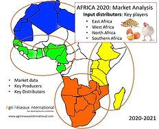 Carte Afrique 4 - Inputs.JPG