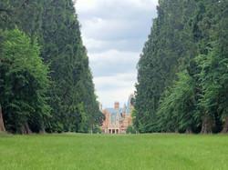 Wellingtonia view of the Manor_edited.jpg