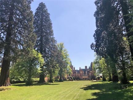 Minley Manors beautiful Wellingtonia Avenue
