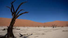 Voyage en Namibie, de Windhoek à Walvis Bay