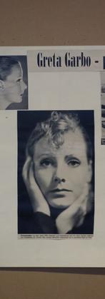 TV Greta Portrait.JPG