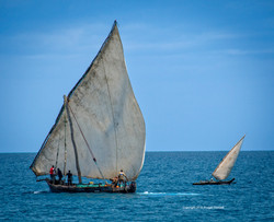 Big dhow little dhow