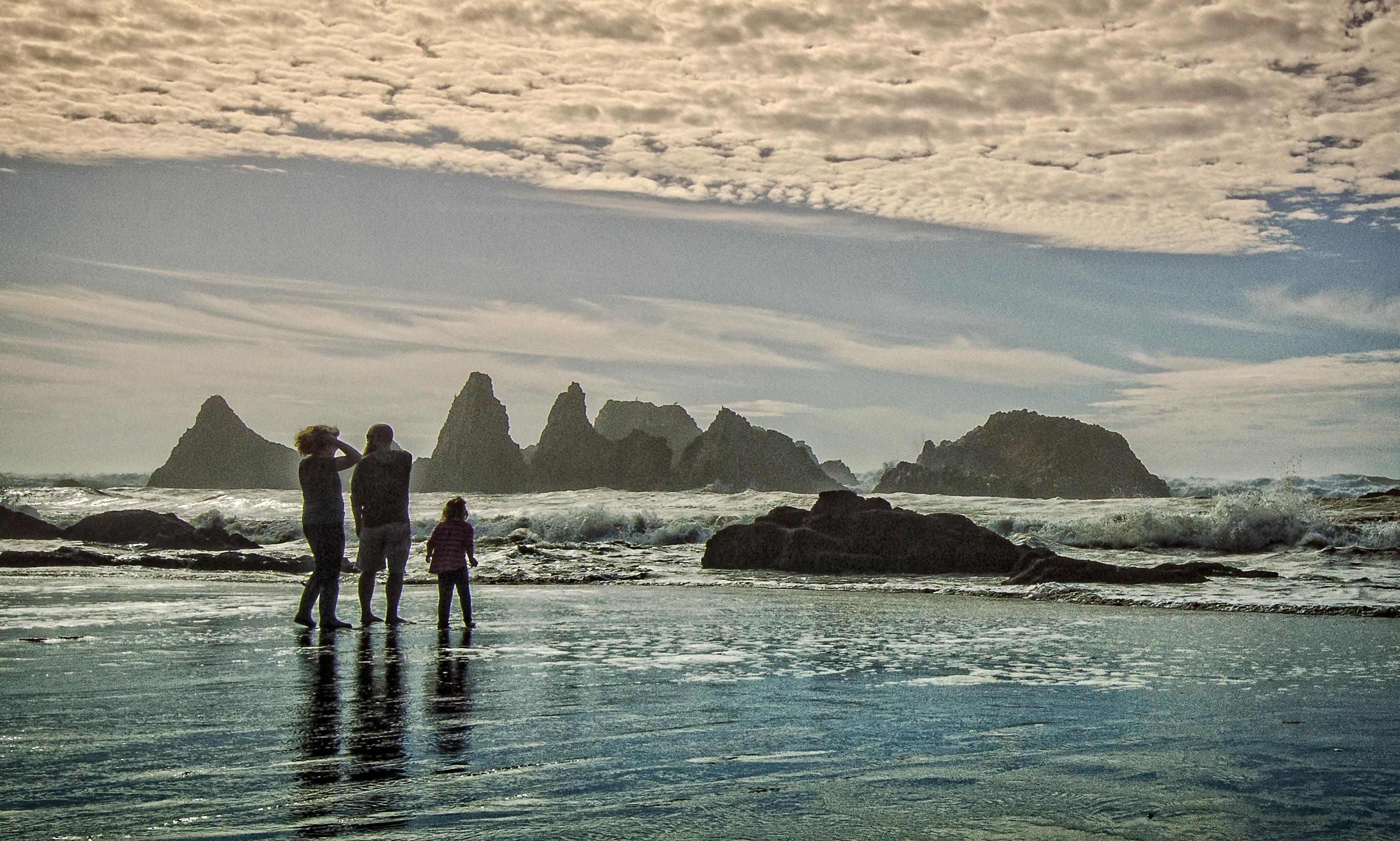 Seal Rock family waders