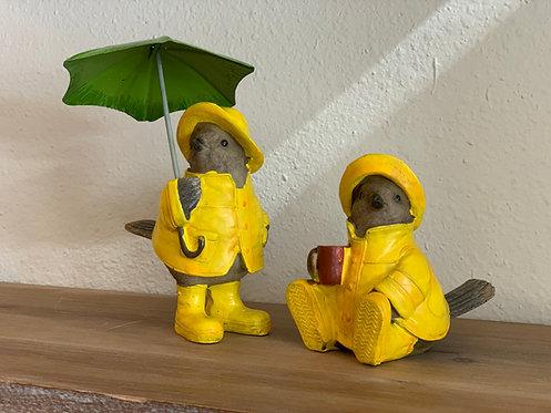 Birds in Raincoats