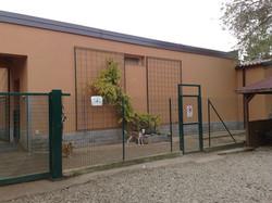 esterno zona ingresso