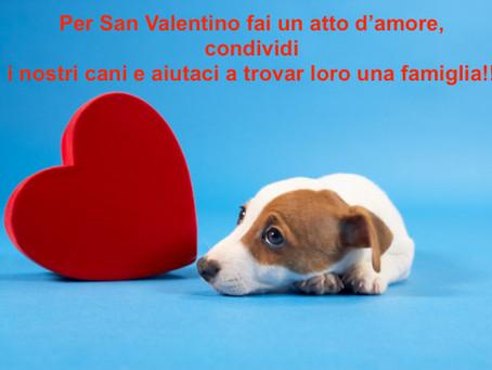 Un San Valentino pieno d'amore anche per noi!!