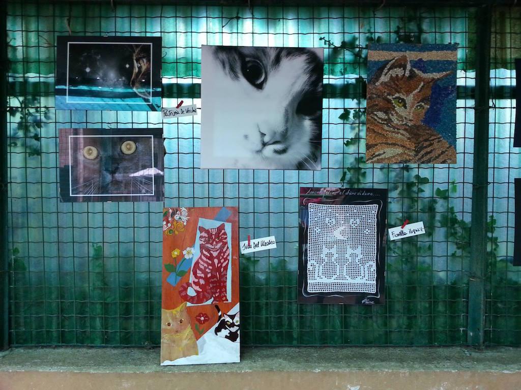 Astad'arte 2013