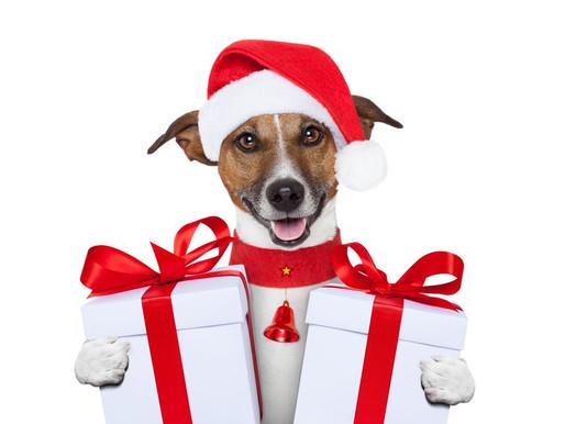 Regali di Natale in anticipo all'Astad, Grazie alla Disugual!