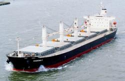 bulk-carrier 2