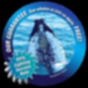 NC sightings guarantee logo-01-optimized