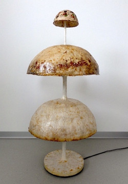 La Mushroom-home s