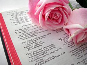 Bakit Hindi Dapat Pagpilian ang mga Verses sa Bible?