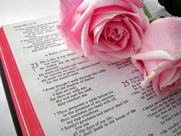 Bibletext