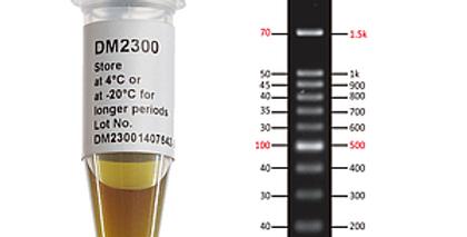 [DM3200] ExcelBand™ 1KB Plus (0.1-10 kb) DNA Ladder, 500 μl