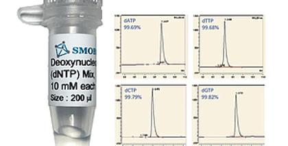 [CD1010] SMOChem™ Deoxynucleotide (dNTP) Mix 10 mM each (40 mM total), 200 µl