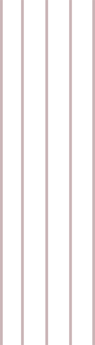 light brown stripe .png
