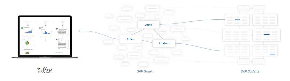 SAP Graph Interface.png