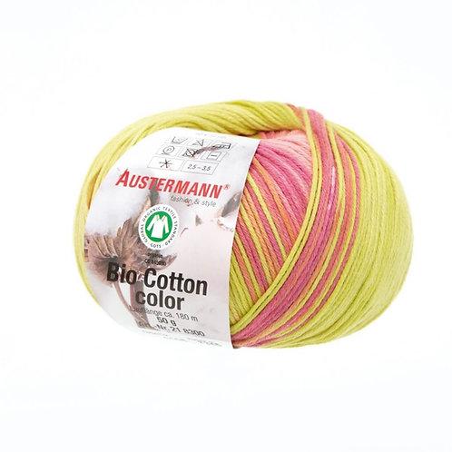Austermann Bio Cotton Color 108 Perle