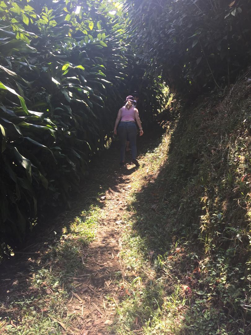 path to aguas lindas