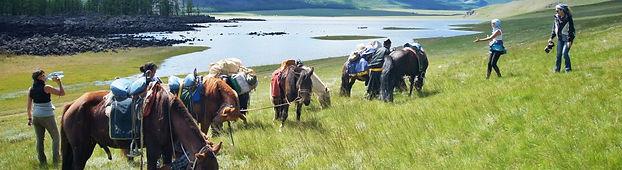Cheval Randonnée Naiman Nuur Chevauchée Orkhon Mongolie