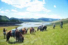 Naiman Nuur, Horseriding