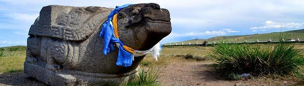 Karakorum turtle Erdene Zuu Orkhon Mongolia