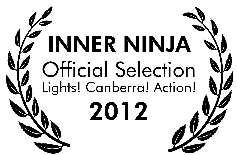 Inner Ninja Lights! Canberra! Action