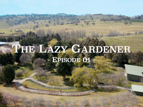 The Lazy Gardener Web Series - Episode 1 Trailer