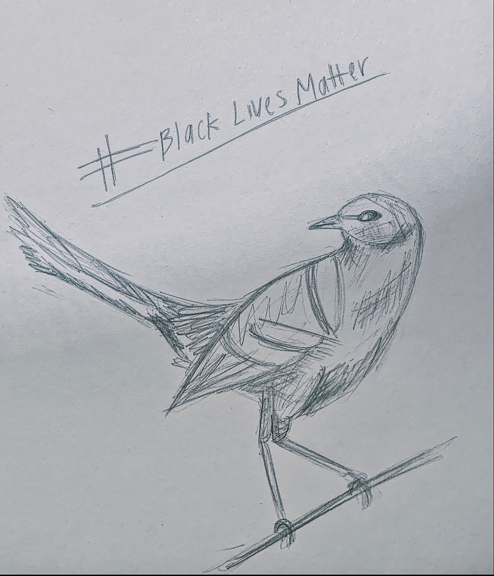 mockingbird black lives matter
