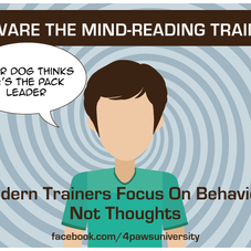 BEWARE THE MIND READING TRAINER