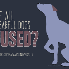 WERE ALL FEARFUL DOGS ABUSED?